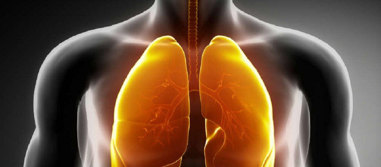 pulmonaire1